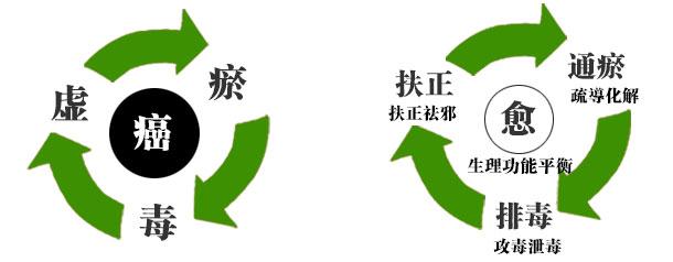 三联平衡医学原理示意图